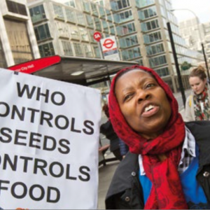 Food sovereignty activists protest outside a secret elite corporate seed conference convened by the Bill and Melinda Gates Foundation (BMGF) and the United States Agency for International Development (USAID). Organised by Global Justice Now. London. (cc) Jess Hurd https://flic.kr/p/rtgpiu